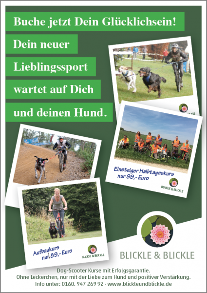 Dog-Scooter Einsteigerkurs